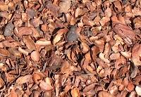 residuos_cacao